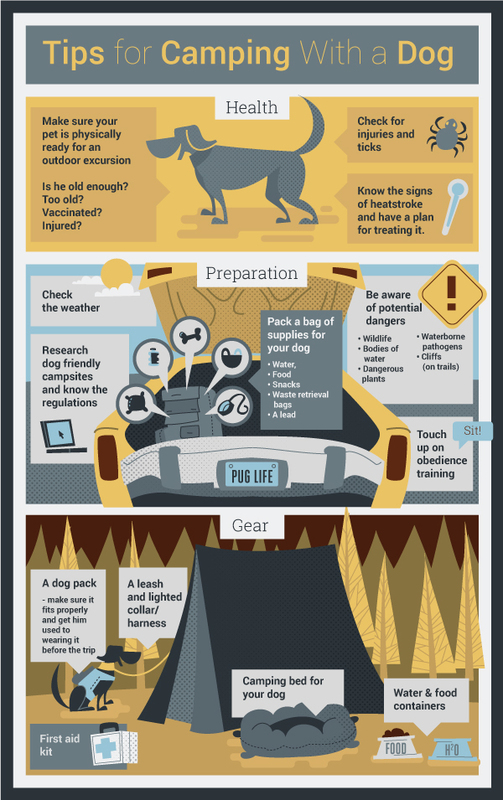 Outdoor Fun with Fido - Camping Tips You Need To Know